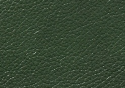 principe nuvolato verde